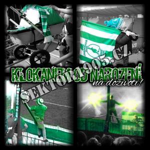 klokanem_od_narozeni